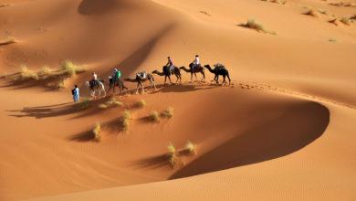 Photo of L'oro giallo del Sahara