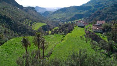 Photo of Gran Canaria, un incontro di culture e gastronomia nel corso dei secoli