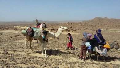 Photo of Algeria: deserti e archeologia