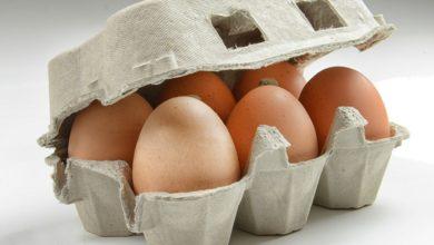 Photo of L'uovo: bello, liscio, delicato, semplicemente perfetto